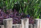 Aberdeen NSW Tropical landscaping 3