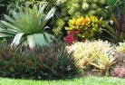Aberdeen NSW Tropical landscaping 9